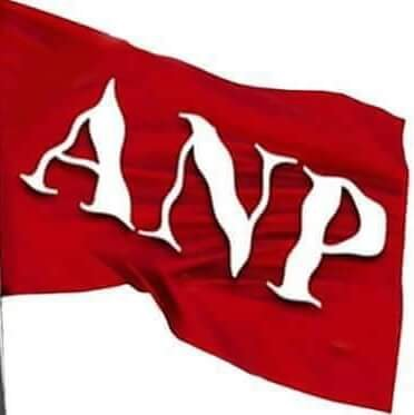 Image result for ANP party flag