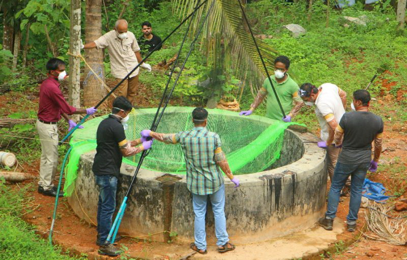 Nipah virus death story picture